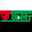 天鹅股份logo