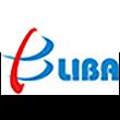 立霸股份logo
