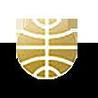 岭南控股logo