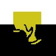 铜陵有色logo