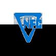 中色股份logo