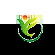 新洋丰logo