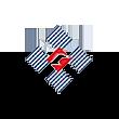宝鹰股份logo