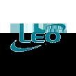 利欧股份logo