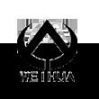威华股份logo
