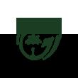 棕榈股份logo