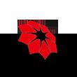 光正集团logo