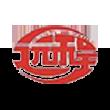 ST远程logo