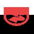 亚光科技logo