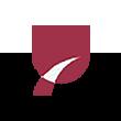 信维通信logo