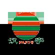 汉宇集团logo